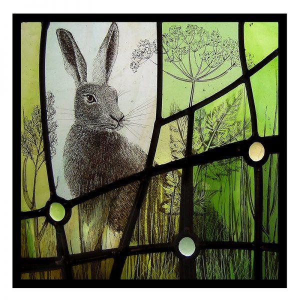card 2 - Curious hare