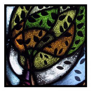 Card 8 - 'Tree of life'